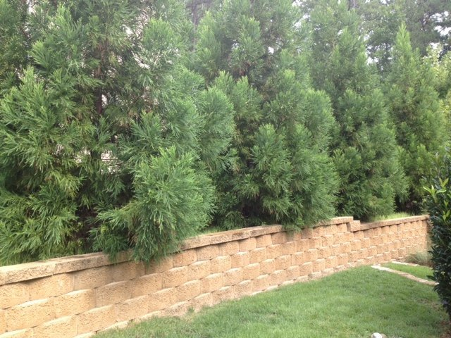 cary-landscaping-retaining-walls-image-1